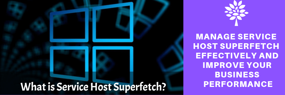what is service host super fetch